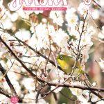 広報あいおいトレとれフレッシュ3月号(2019)