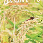 広報あいおいトレとれフレッシュ10月(2020)